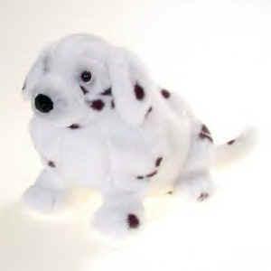 Great Dalmation Chubby Adorable Dog - ap25930_pl_dalmatian  Graphic_705722  .JPG