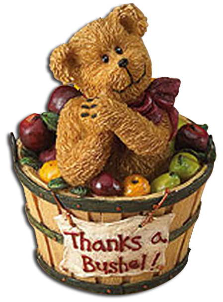 These adorable teddy bear figurines and plush are ready to let someone know you are thinking of them with a special unique Thank You gift!