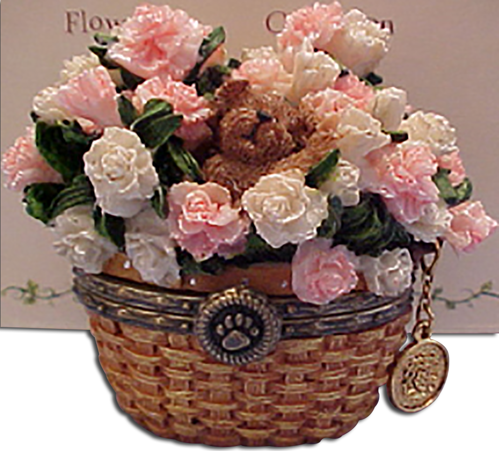 Cuddly collectibles boyds beary blossom birthday flower treasure boxes boyds beary blossom birthday month january carnations introduced spring 2005 and has been retired izmirmasajfo