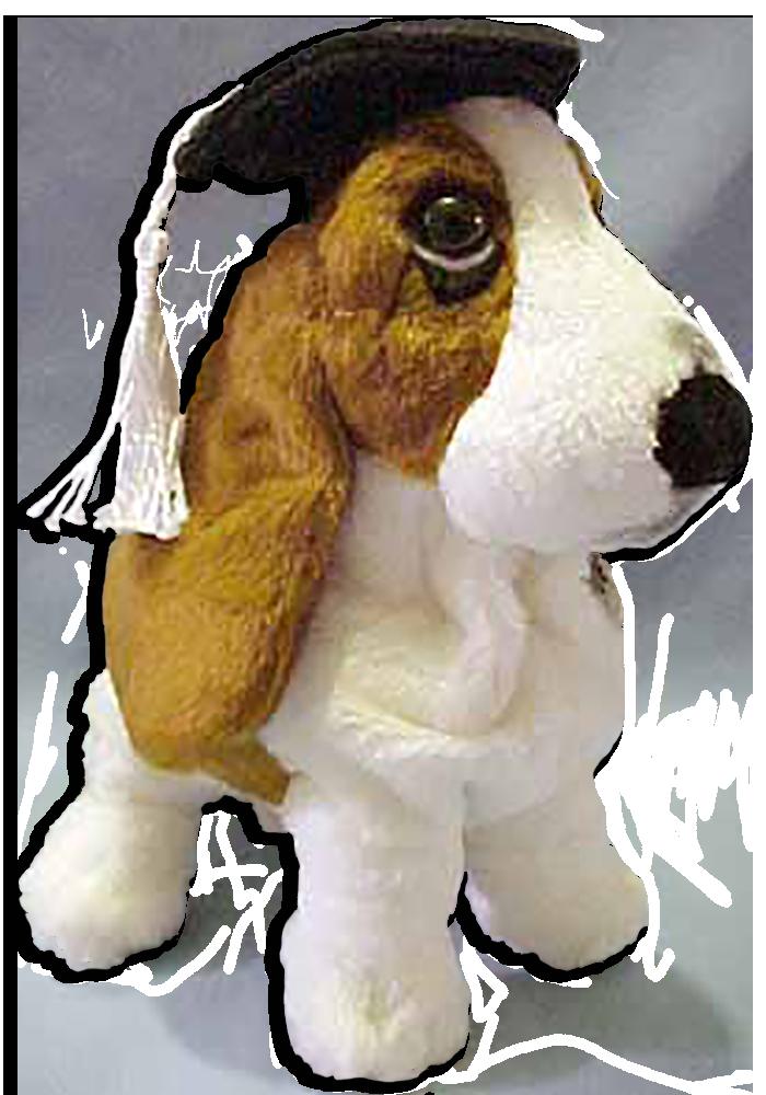 Cool Graduation Cap Black Adorable Dog - ap24883_pl_grad_hushpuppies  HD_304998  .png